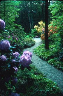 Path at the Garden in the Woods